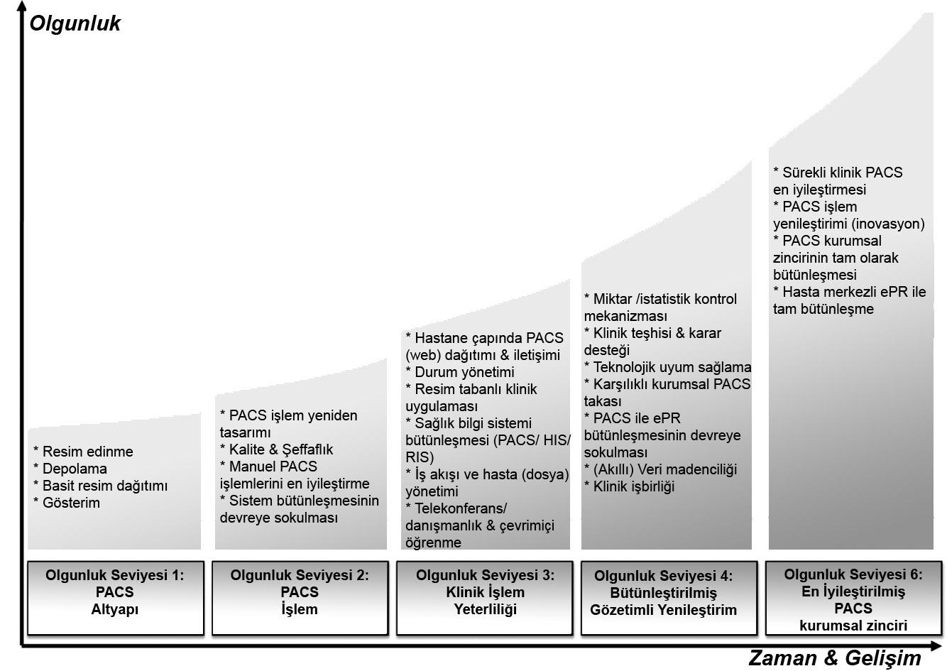 PACS - PMMI Seviye Şeması